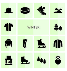 14 winter icons vector