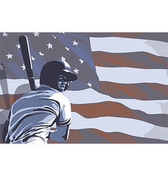 BASEBALL FLAG USA COLOR vector image
