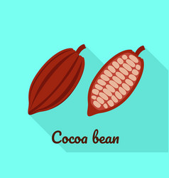 cocoa bean icon flat style vector image