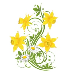 Easter daffodils daisy vector