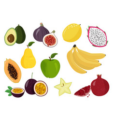 Fresh fruits collection set sweet fruits vector