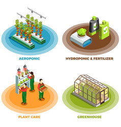 Hydroponic and aeroponic 2x2 design concept vector