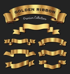 Set of premium golden ribbons for your design vector image vector image