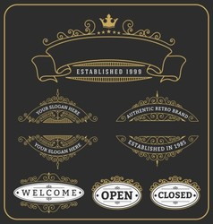 Set of vintage frame and labels design vector image