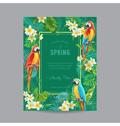 Tropical Birds and Flowers Colorful Frame vector image