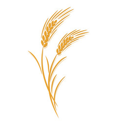 Wheat ear symbol vector