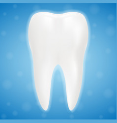 clean and glossy 3d realistic teeth isolated on a vector image
