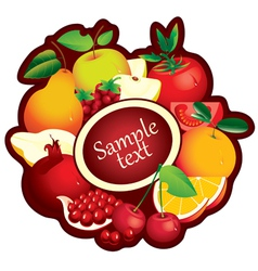 fruits range vector image