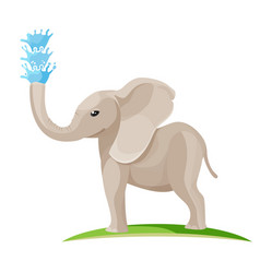 Young baelephant blows water out trunk vector