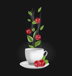 cranberry tea vector image vector image
