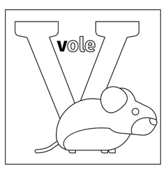 Vole letter V coloring page vector image