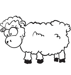 sheep vector image vector image