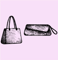 Womens handbags clutch bag vector image