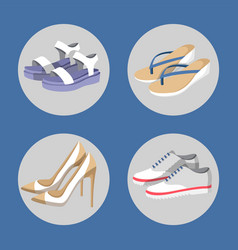 shoe collection summer mode vector image vector image