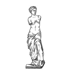 Aphrodite ancient statue engraving vector