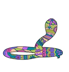 Colorful snake vector
