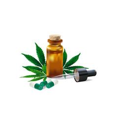 hemp oil drugs and cannabis leaf isolated vector image
