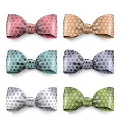 set of isolated silk bows with polka dot vector image