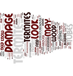 Termite damage text background word cloud concept vector
