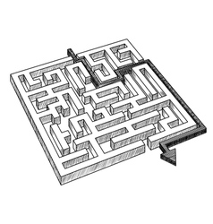 Labyrinth or maze solved by arrow vector image