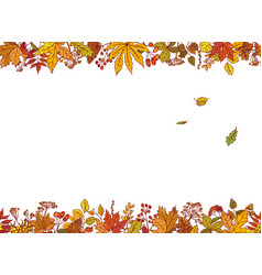 Colourful outline background sketch autumn vector