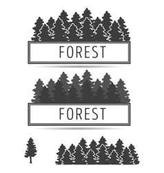 Logo or emblem of fir-trees vector image