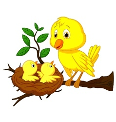 Cartoon Mother and baby bird vector image vector image