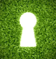 Green leaves with keyhole vector image