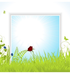 spring background pane with flowers vector image