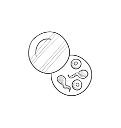 Donor sperm sketch icon vector image