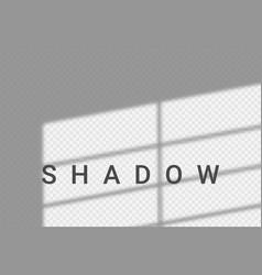 Shadow light overlay window wall scene mockup vector