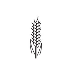wheat ears icons vector image