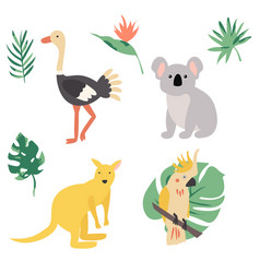 fauna of australia animal set vector image