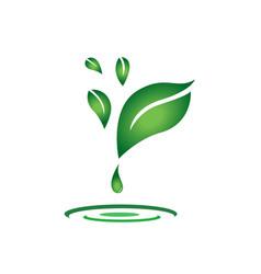 Flying leaf natural essential oil drop design vector