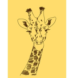 Hand drawn giraffe vector
