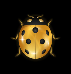ladybug gold insect small icon golden lady bug vector image