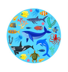 ocean animals on blue background vector image