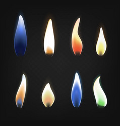 realistic 3d detailed burning multicolored flame vector image