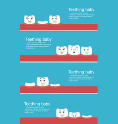 teething baby flyers with teeth vector image