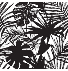 Tropic in black and white colors vector