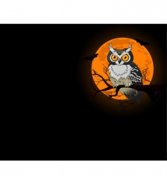 owl night background vector image vector image