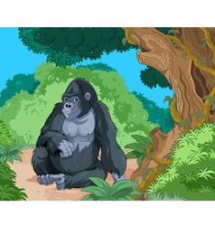Sitting gorilla vector