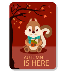 autumn is here squirrel background image vector image