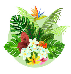Colorful tropical plants design vector
