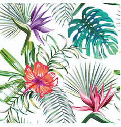 exotic tropical plants and flowers seamless white vector image