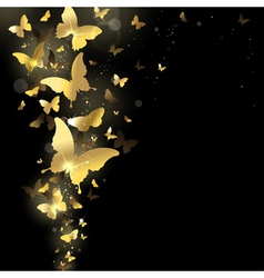 fireworks of butterflies vector image