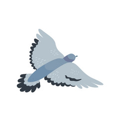 flying pigeon flat free vector image