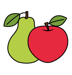 fresh pear and apple fruits vector image