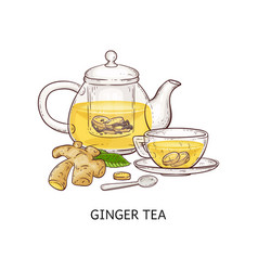 Ginger tea - healthy hot drink in glass teapot and vector