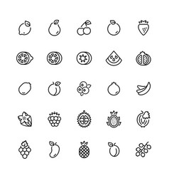 outline icon set fruits symbols vector image